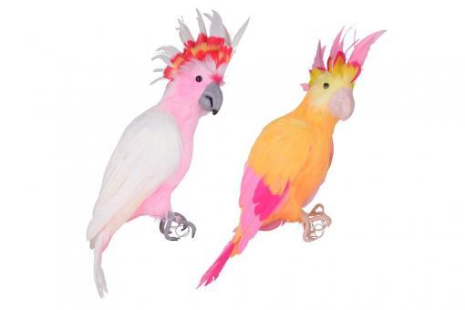 Papagei Urban Jungle, Größe L